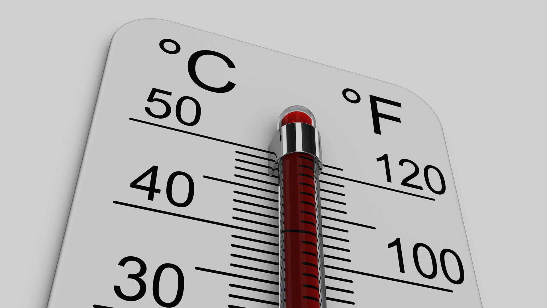 Foodservice Thermometers Middle East